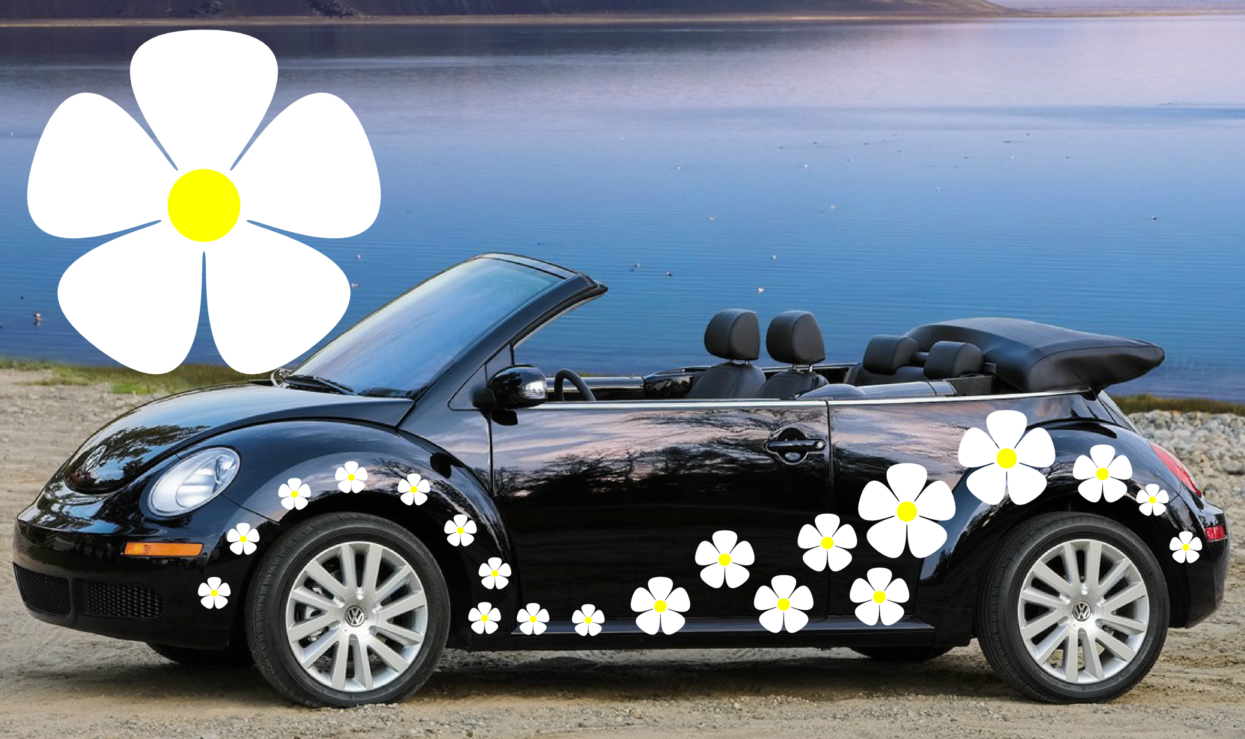 32 white pansy flower car decal stickers